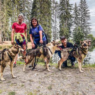 Faire découvrir la canirando à la famille ✔️  Un super moment sportif suivi d'un tour au chenil pour profiter des chiens 🥰  Vivement la prochaine ! Merci 3D Nordic 🙏  #savoiemontblanc #montagne #canirando #huskies #rando #hiking #hautesavoie #moutainlife